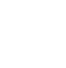 DLS Security